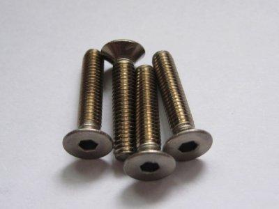 4 Stück Titanschrauben Senkkopf M4x20mm